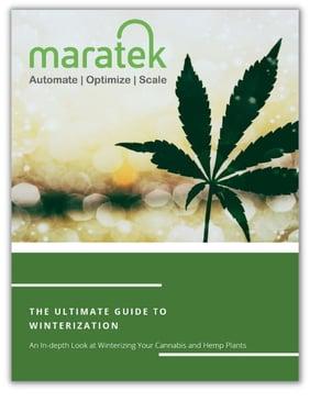 Cannabis Winterization Guide
