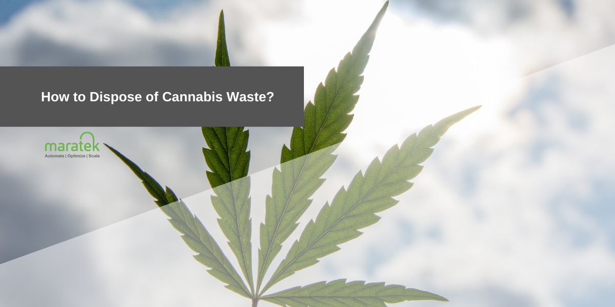 How to Dispose of Cannabis Waste