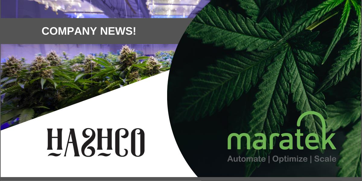 Maratek HashCo Announcement