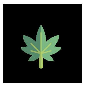 Cannabis & Hemp Equipment
